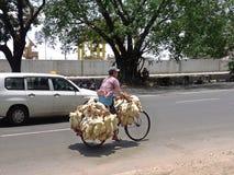 骑有活鸡的缅甸人一辆自行车在( Rangoon)仰光, ( Burma)缅甸 免版税库存照片