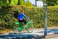 骑石灰自行车的女孩在边路 库存照片