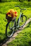骑自行车与一个柳条筐并且反弹花 免版税库存图片