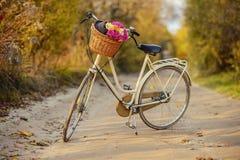 骑自行车与篮子有很多领域花 免版税图库摄影