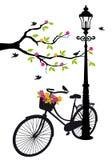 骑自行车与闪亮指示、花和结构树,向量 免版税库存照片