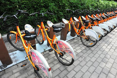 骑自行车公共 库存照片