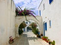 骑自行车在一条传统海岛街道和房子上 免版税库存图片