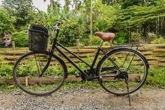 骑自行车在一条土路在庭院里 免版税图库摄影