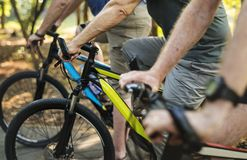 骑自行车在公园的小组前辈 库存图片