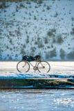 骑自行车在冬天 库存照片