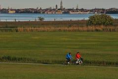骑自行车在威尼斯公园  库存图片