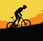 骑自行车在山 免版税库存照片