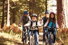 骑自行车在森林足迹,正面图的家庭山 免版税库存照片