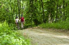骑自行车在森林里的女孩 免版税库存照片