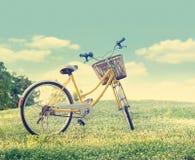 骑自行车在白花领域和草在阳光自然背景,柔和的淡色彩和葡萄酒颜色口气中 免版税库存图片