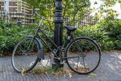 骑自行车在街道,被束缚对灯岗位 库存图片
