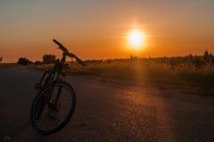 骑自行车在路和日落的背景在背景葡萄园里 免版税库存图片
