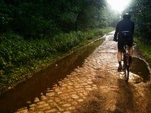 骑自行车在铺石路 免版税库存图片