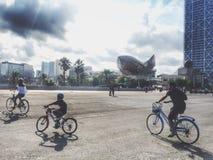 骑自行车在巴塞罗那 库存图片