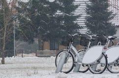 骑自行车城市 免版税库存图片