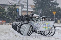 骑自行车城市 库存照片