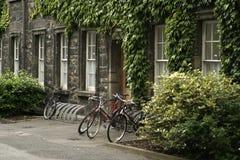 骑自行车学院三位一体 库存图片