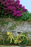 骑自行车我的黄色 免版税库存图片