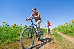 骑自行车放松 库存照片