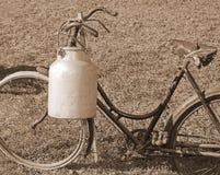 骑自行车有老容器罐头和乌贼属作用的送牛奶者 免版税库存图片