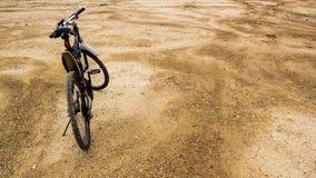 骑自行车浅骑自行车的骑自行车者深度域重点森林现有量山的透视图 库存照片