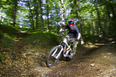 骑自行车的人下坡山 库存图片