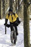 骑自行车的人在单磁道的多雪的森林里 库存图片