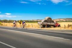骑自行车的人在巴罗莎山谷,南澳大利亚 免版税库存照片