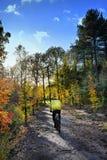 骑自行车的人在秋天森林里 库存图片
