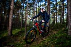 骑自行车的人年轻人 免版税库存照片