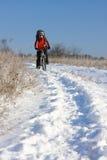 骑自行车的人微笑的雪 免版税库存图片