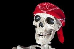 骑自行车的人骨骼 库存图片
