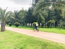 骑自行车的妇女女孩在有绿色棕榈树的胡同在一个热带温暖的避暑胜地的公园 库存图片