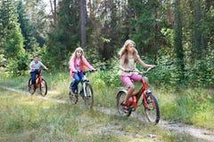 骑自行车的孩子在森林 免版税库存图片