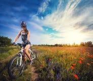 骑自行车的少妇在一个开花的鸦片草甸 免版税库存照片