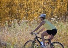 骑自行车的山前辈妇女 免版税图库摄影