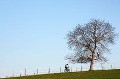 骑自行车的山 图库摄影