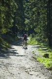 骑自行车的山 库存图片