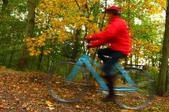 骑自行车的森林妇女 免版税库存图片