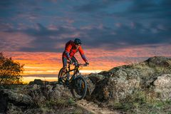 骑自行车的红色的骑自行车者在秋天岩石足迹在日落 极端体育和Enduro骑自行车的概念 库存图片