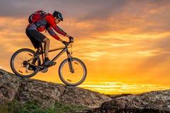 骑自行车的红色的骑自行车者在秋天岩石足迹在日落 极端体育和Enduro骑自行车的概念 免版税库存照片
