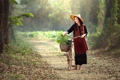 骑自行车的美丽的老挝人妇女 老挝人传统美好的w 库存图片