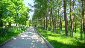 骑自行车的运动的妇女在背景夏天公园 自行车骑马妇女年轻人 妇女自行车城市 妇女自行车骑马 股票视频