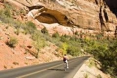 骑自行车的zion 库存图片