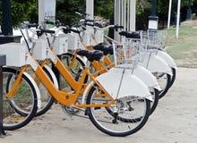 骑自行车租务 库存照片