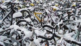 骑自行车积雪 免版税库存图片