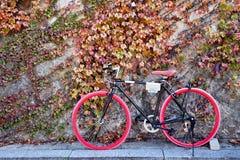 骑自行车红色 免版税库存图片