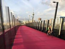 骑自行车者乘驾在纳尔逊街Cycleway上的一辆自行车在奥克兰新的Z 免版税库存照片