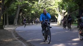 骑自行车者乘驾在Vondelpark 股票视频
